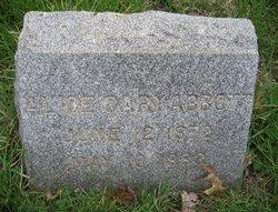 Alice Cary Abbott