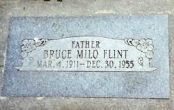 Bruce Milo Flint