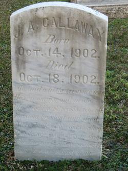 James A Callaway