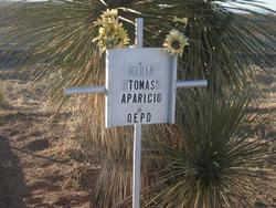 Tomas Aparicio