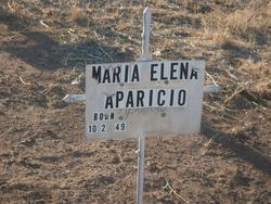 Maria Elena Aparicio