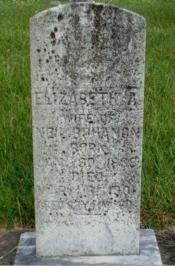 Elizabeth Amanda Mandy <i>Martin</i> Bohannon