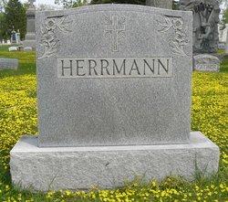 William J. Herrmann