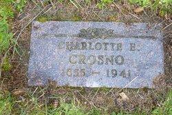 Charlotte Ellen <i>King</i> Crosno