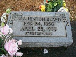 Ara <i>Hinton</i> Beard