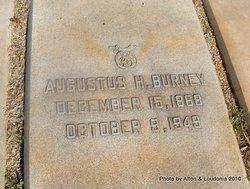 Augustus H. Burney