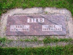 Bert Bird