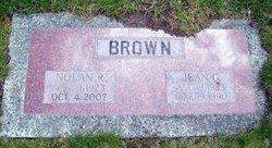 Nolan Royal Brown