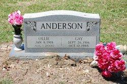 Gay <i>Rasor</i> Anderson