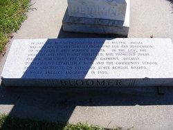 Dexter Chamberlain Bloomer