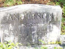 Julia Francine <i>Drury</i> Anderson