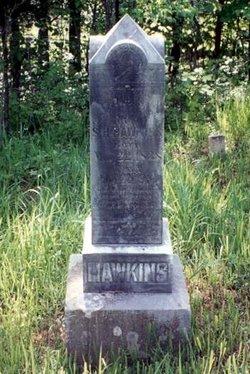 Frances Jane <i>Barker</i> Hawkins