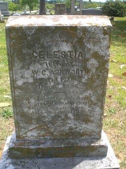 Celestia Ashworth