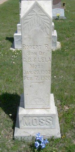 Robert R Moss