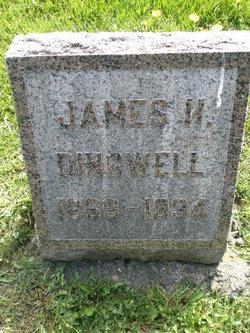 James Hamilton Dingwell