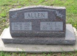 Amy Jean Allen