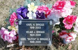 Karl Howard Briggs, I