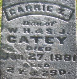 Carrie Z. Catey