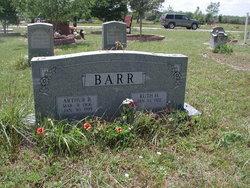 Ruth Helen <i>Heinroth</i> Barr