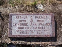 Arthur Calvin Palmer