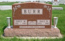 Dale Nelson Burr