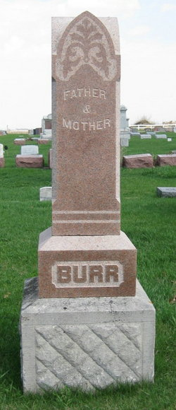 Nelson Burr