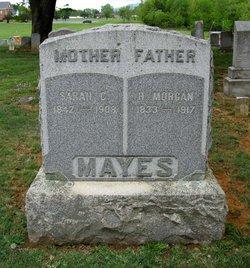 Henry Morgan Mayes