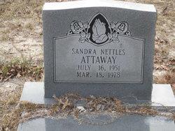 Sandra <i>Nettles</i> Attaway