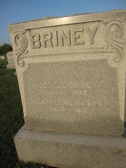 George Briney