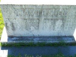 Thomas J Davidson