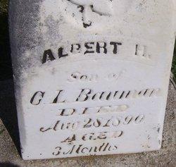 Albert H Bauman