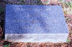 David B Hunt