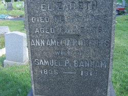 Mrs Ann Amelia <i>Roberts</i> Banham