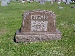 Sarah Ophelia Sadie <i>Knapp</i> Seward