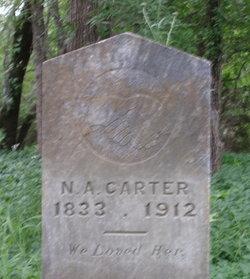 Nancy <i>Wood</i> Carter