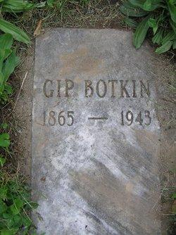 William Gipson Botkin
