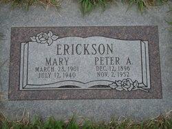 Peter A Erickson