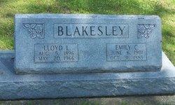 Emily <i>Copper</i> Blakesley