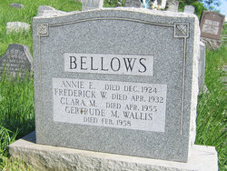Annie E Bellows