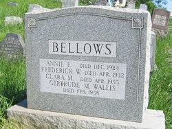 Frederick W Bellows