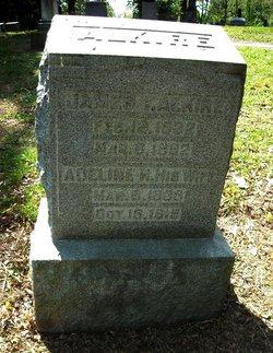 Adeline H Alkire