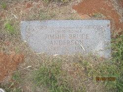 Jimmie Ione <i>Brunson</i> Bruce Anderson