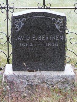 David E Bertken