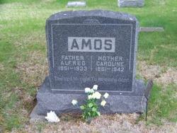 Alfred A. Amos