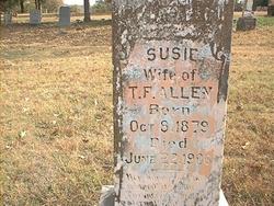 Susan Jane Susie <i>McAlpin</i> Allen