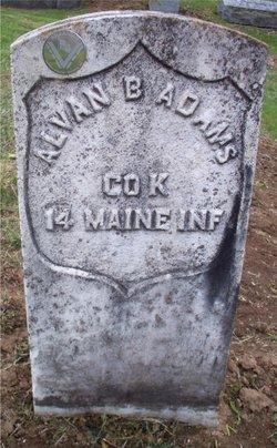 Pvt Alvan B. Adams