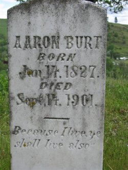 Aaron Burt