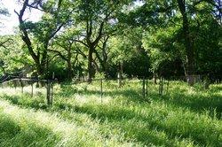 McCrabb Cemetery