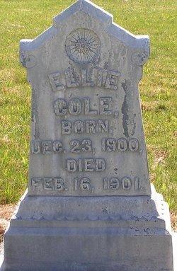 Ellie Cole