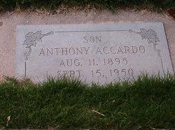 Anthony Accardo